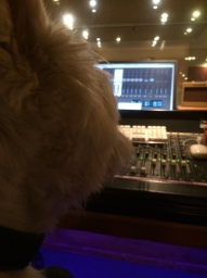 Radley helping me mix the Narrowboat Sessions